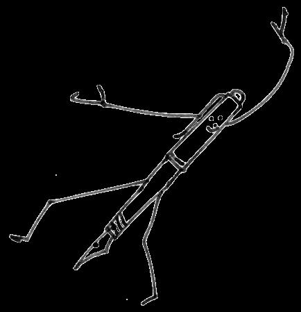Logo poppentje De Schrijfschool vrijstaand